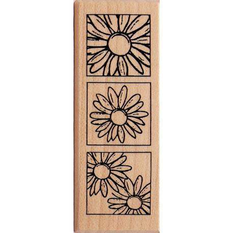 Tampon bois fleurs marguerites