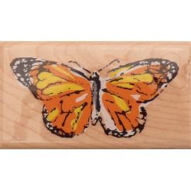Tampon bois papillon