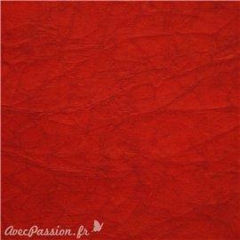 Papier cristal rouge 48x70cm C09