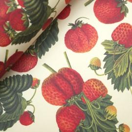 Papier tassotti motifs fraises 50x70cm 1745
