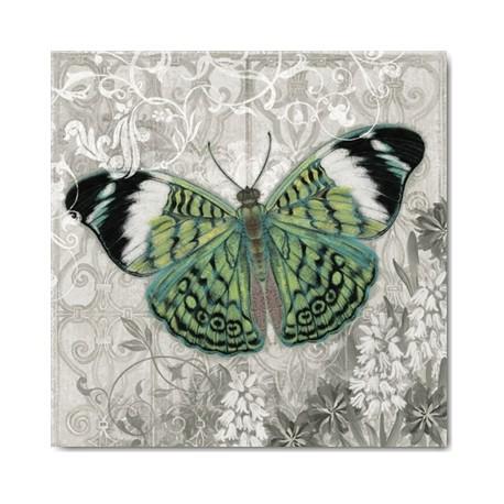 cartes postales encadrement carte alan hopfensperger green butterfly. Black Bedroom Furniture Sets. Home Design Ideas