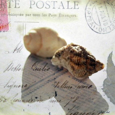 Carte Postale 14x14 cm Deborah Schenck postal schells I