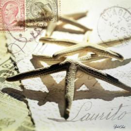 Carte Postale 14x14 cm Deborah Schenck postal schells III