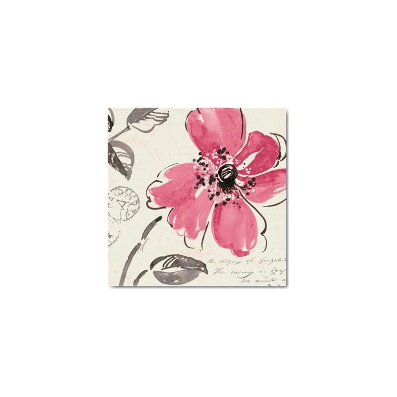 cartes postales fleurs encadrement pela studio windy i. Black Bedroom Furniture Sets. Home Design Ideas