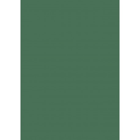 Pergamano papier vellum A4 90 gr 1 fe vert prairie -61995-