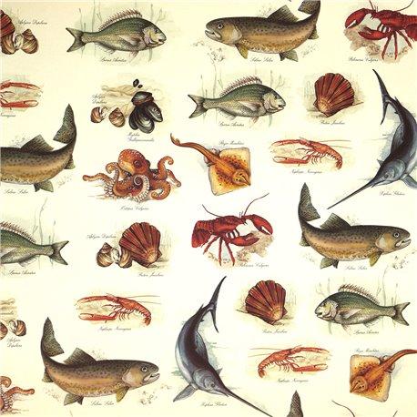 Papier tassotti motifs poissons et cie 50x70cm