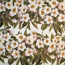 Papier tassotti motifs roses de noel blanches 50x70cm 191