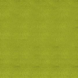 papier scrapbooking poudre de paillettes vert