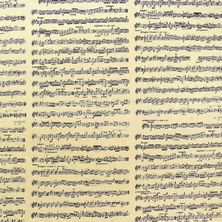 Papier népalais lokta notes de musique antiques