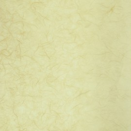 Papier murier crème silk