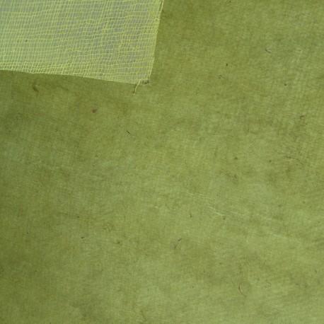 Papier fantaisie cotton vert