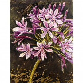 Carte d'art scripted agapanthus