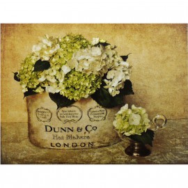 Carte d'art london hydrangea
