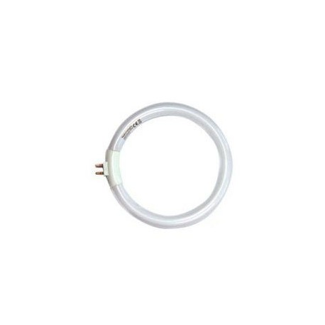 lampe daylight ampoule circulaire
