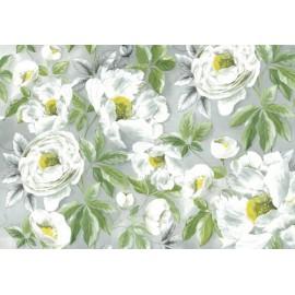 Papier de riz Stampéria Roses blanches modernes 48x33cm