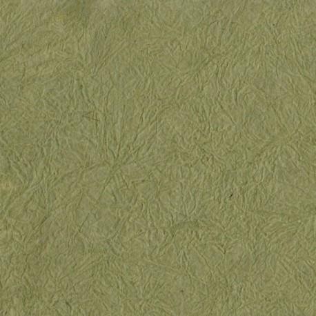 Papier népalais lokta tortue froissé vert olive