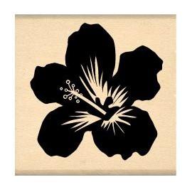 Tampon bois fleur hibicus noir