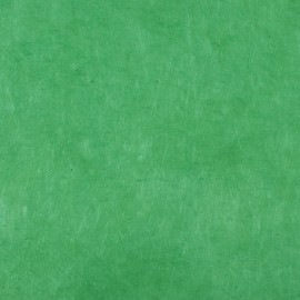 Papier népalais lokta vert chlorophyle
