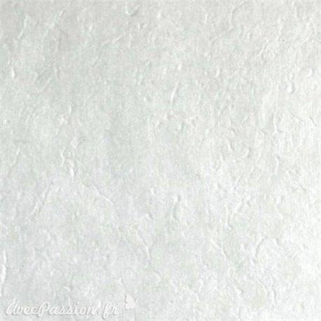 Papier népalais lokta lamaLi précieux argent