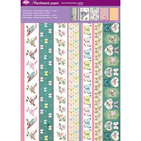 Pergamano assortiment papier parchemin jardin botanique 62604 5f