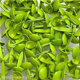 Attaches parisiennes vert anis 5mm