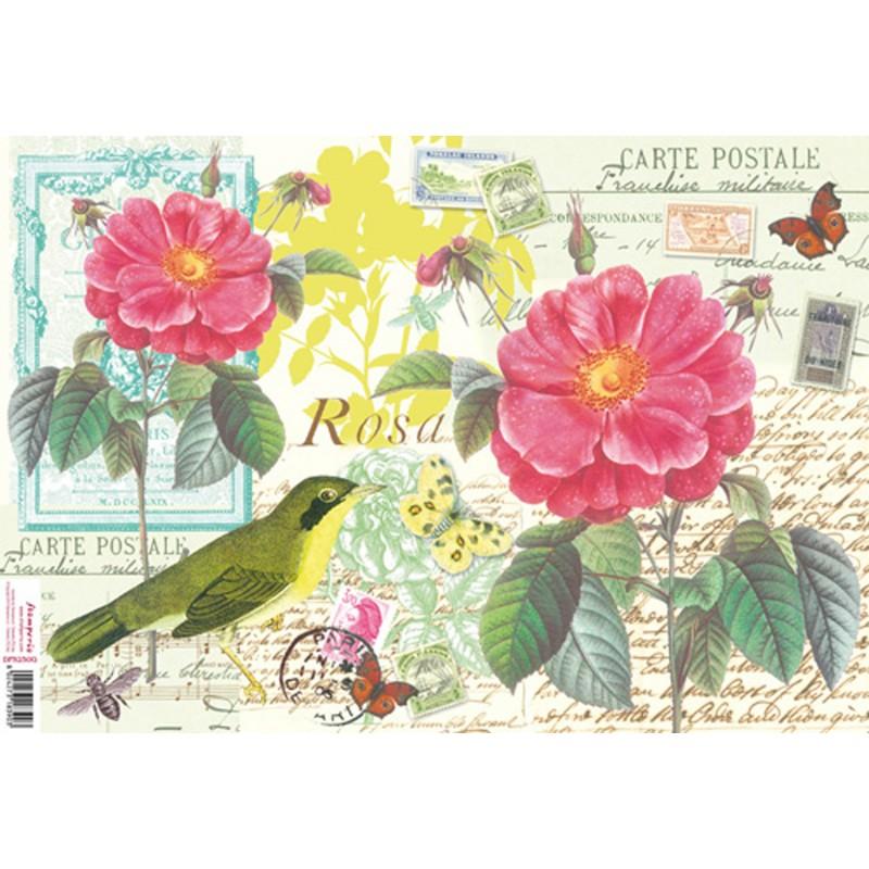 papier de riz stamperia pour d coupage carte postale oiseau. Black Bedroom Furniture Sets. Home Design Ideas