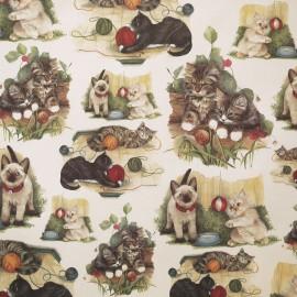 Papier tassotti motifs chats