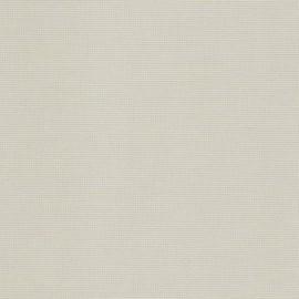 Papier uni picot gris clair