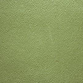 Papier fantaisie gum vert lime