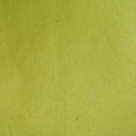 Papier népalais lokta vert anis
