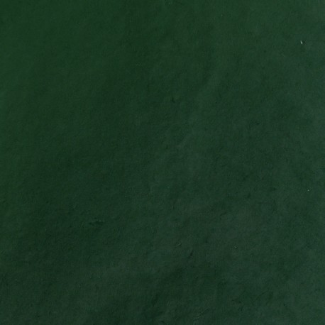 Papier népalais lokta vert foncé