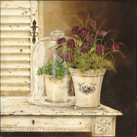 Carte d'art maison shabby chic pot plantes