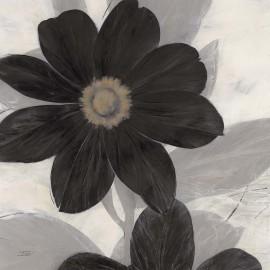 Carte d'art fleur noire