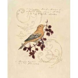 Carte d'art l'oiseau qui chante Chad Barrett