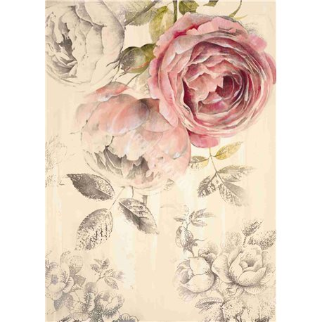 Carte d'art Roses éternelles Stefania Ferri