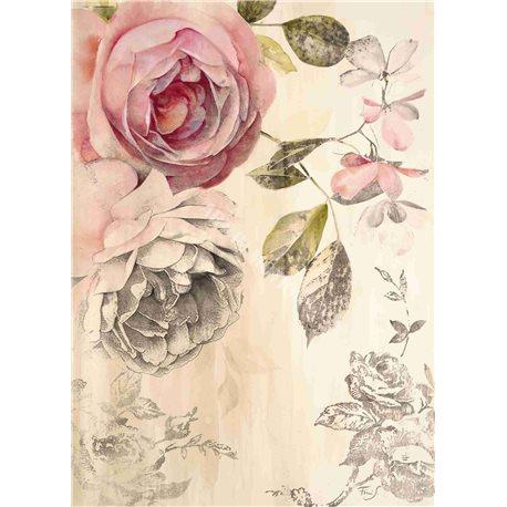 Carte d'art Roses éternelles 2 Stefania Ferri