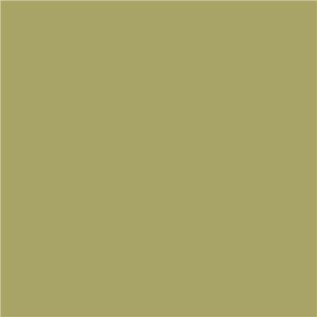 Papier pour carte et faire part vert roseau x5 220g