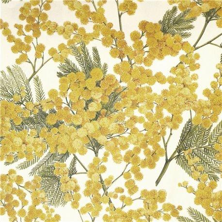 Papier tassotti motifs mimosa