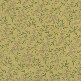 Papier fantaisie eden vert chocolat