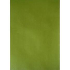 Pergamano paquet papier parchemin vert feuille 61587 5 feuilles