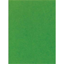 Pergamano paquet papier parchemin vert mousse 61601 5 feuilles