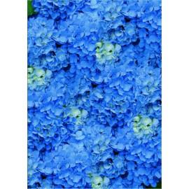 Pergamano paquet papier parchemin vellum hortensia bleu 5 feuilles // Ce produit n'est plus fabriqué