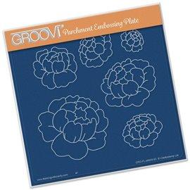 Gabarit tracage fleurs pivoines Groovi pour Pergamano
