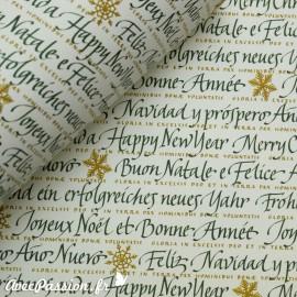 Papier tassotti motifs vert écritures de noël