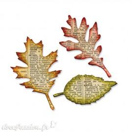 Dies découpe feuilles Sizzix Bigz 3p