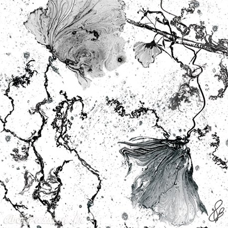 Carte d'art Valie Le Boeuf Belles de jour