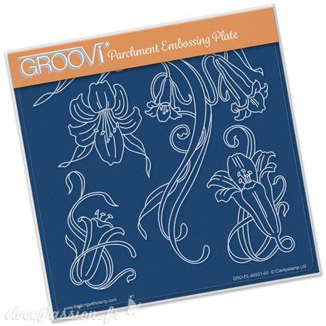 Gabarit tracage du parchemin fleurs de lys Groovi