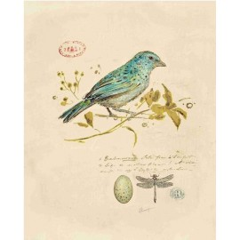 Carte d'art oiseau chanteur doré 1 Chad Barrett
