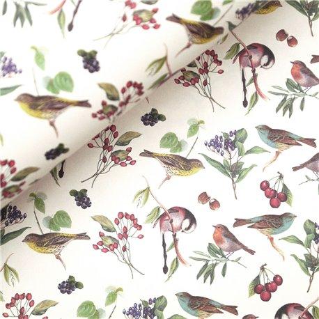 Papier tassotti à motifs oiseaux
