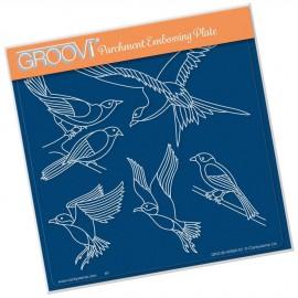 Gabarit tracage du parchemin oiseaux Groovi